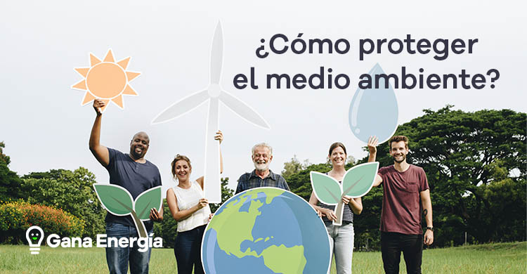 ¿Cómo proteger el medio ambiente? Consejos a tener en cuenta