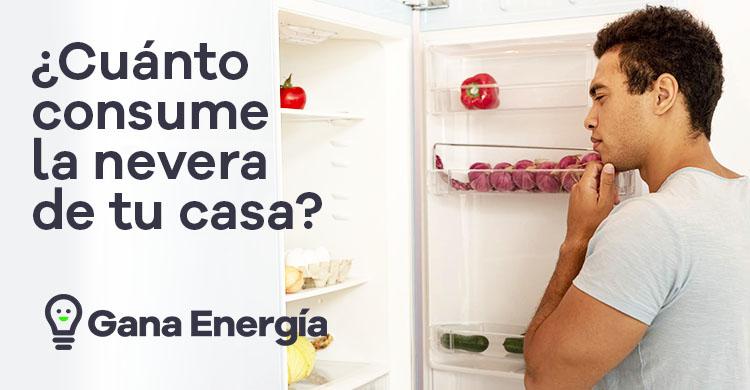 ¿Cuánto consume una nevera en casa?